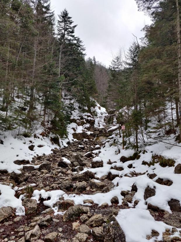 Spacer do Doliny Białego