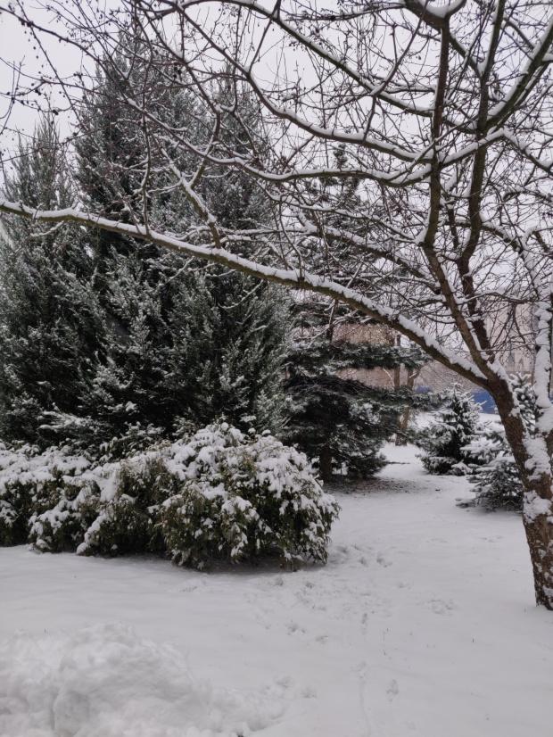 Zima lubelska